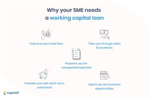 infographic on the 5 reasons why SMEs need working capital loans