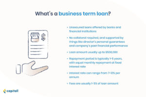 Infographic on business term loan