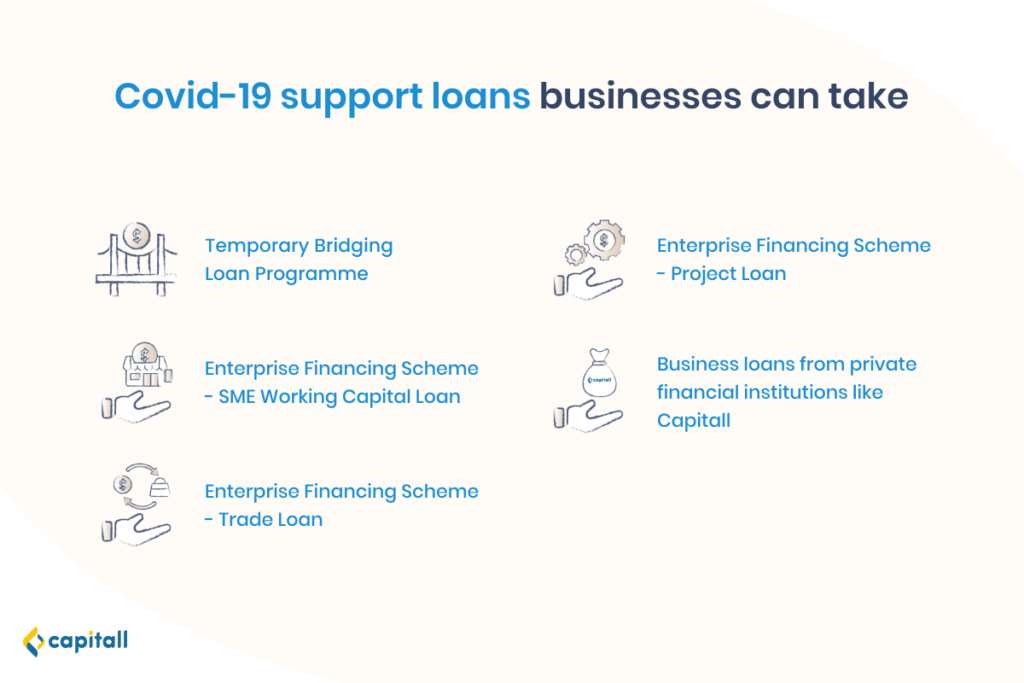 Infographic on Covid-19 support loans businesses can take