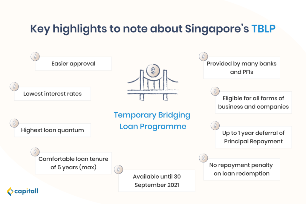 Infographic on the 9 highlights of the temporary bridging loan programme
