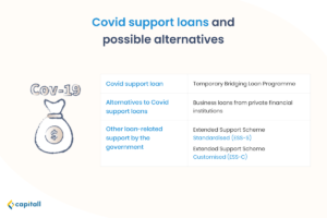Infographic of covid support loans and its possible alternatives