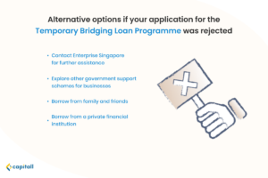 Infographic listing alternative options if an application for the Temporary Bridging Loan Programme got rejected.