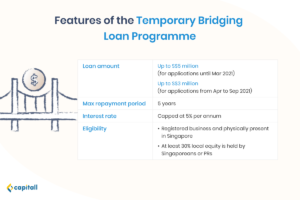 Infographic on the Temporary Bridging Loan Programme